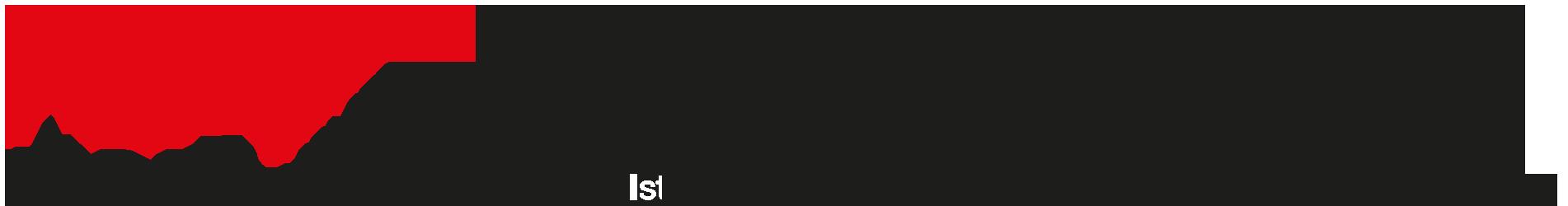 I.V.R.E.A. S.r.l. STP – Istituto per le Veriche, Revisioni ed Elaborazioni Aziendali